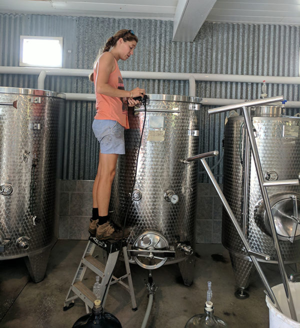 Woman checking controls of steel fermentation tank.