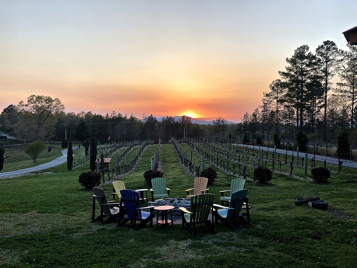 Spring sunset at the vineyards. Photo by Steve Collins.