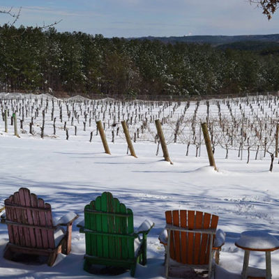 Adirondack chairs in the snow in the vineyards.